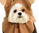 Best Star Wars Pet Costumes