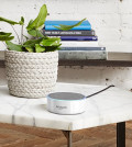 Shut Up and Take My Money: $50 Echo Dot (2nd ge...