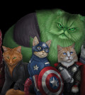 The Avengers as Team Catvengers
