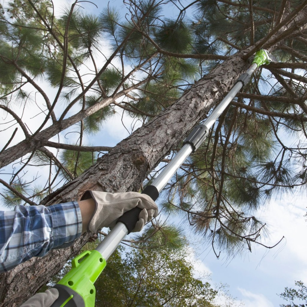 GreenWorks Cordless Pole Saw