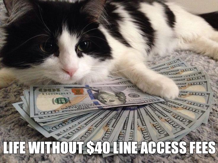 line-access-fees