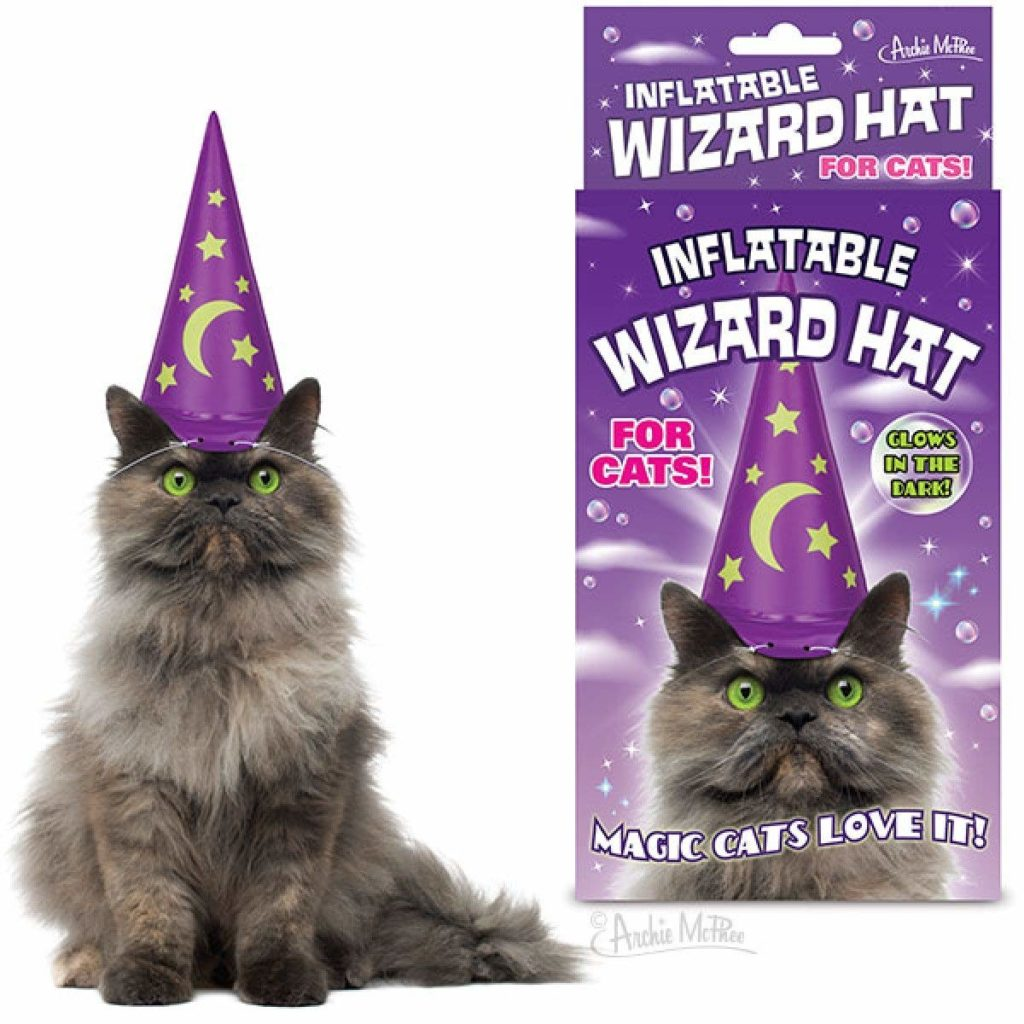 wizard-hat-cats